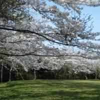 菖蒲谷池自然公園 (しょうぶたにいけしぜんこうえん)