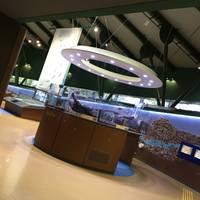 相模川ふれあい科学館 アクアリウムさがみはら の写真 (3)