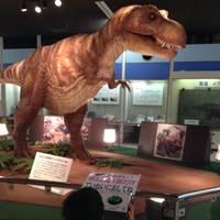 京都市青少年科学センター の写真 (2)