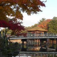 奈良公園 の写真 (1)