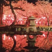 芦城公園(ろじょうこうえん) の写真 (2)