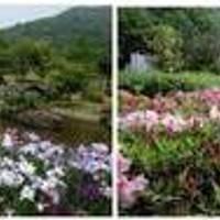 春日井市都市緑化植物園 グリーンピア春日井
