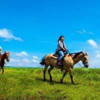 アイランドリゾート阿蘇 エル・パティオ牧場 阿蘇ホーストレッキング(乗馬)