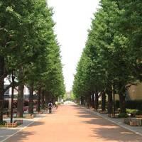 昭和の森ガーデン カフェアンドバーベキュー (CAFE&BBQ)