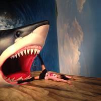 熱海トリックアート迷宮館 の写真 (2)