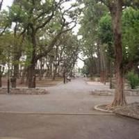 若林公園 の写真 (1)