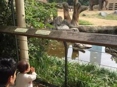 天王寺・阿倍野橋駅周辺の子どもと一緒に楽しめるおでかけコース