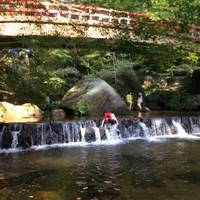 岩屋堂公園 の写真 (2)