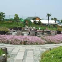 和泉リサイクル環境公園 の写真 (3)