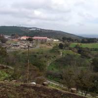 マザー牧場 の写真 (2)