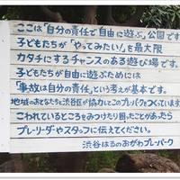 渋谷はるのおがわプレーパーク の写真 (3)